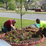 Image of volunteers planting flowers.